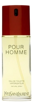 Парфюмерная вода YSL POUR HOMME